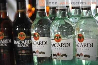 Come bere il rum Bacardi