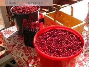 Hur man lagrar lingonberry