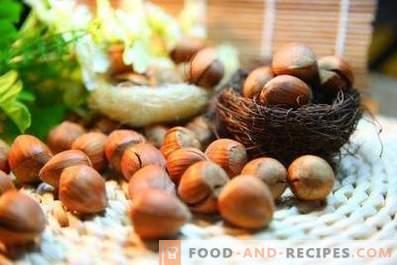 Hasselnötter - användbara egenskaper och kontraindikationer